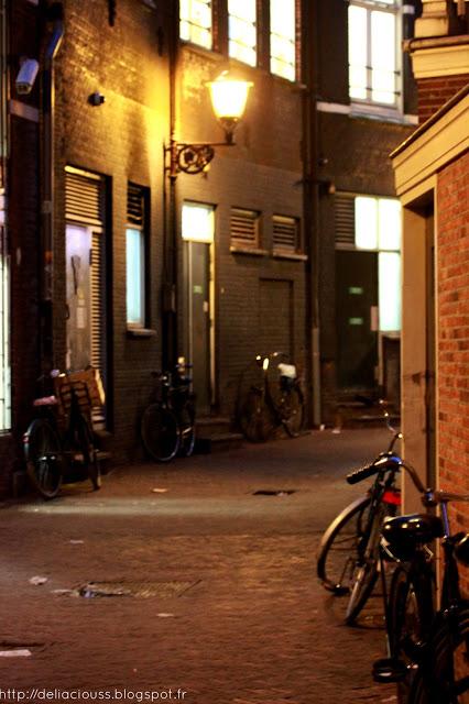 Visite du quartier rouge Amsterdam