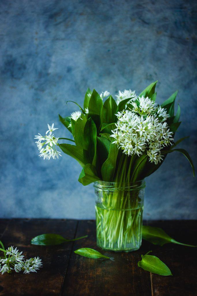 Bouquet d'ail des ours